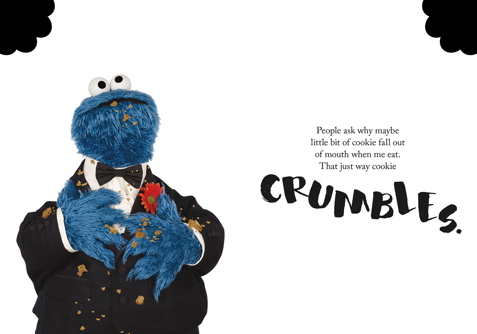 crumbs from cookie monster
