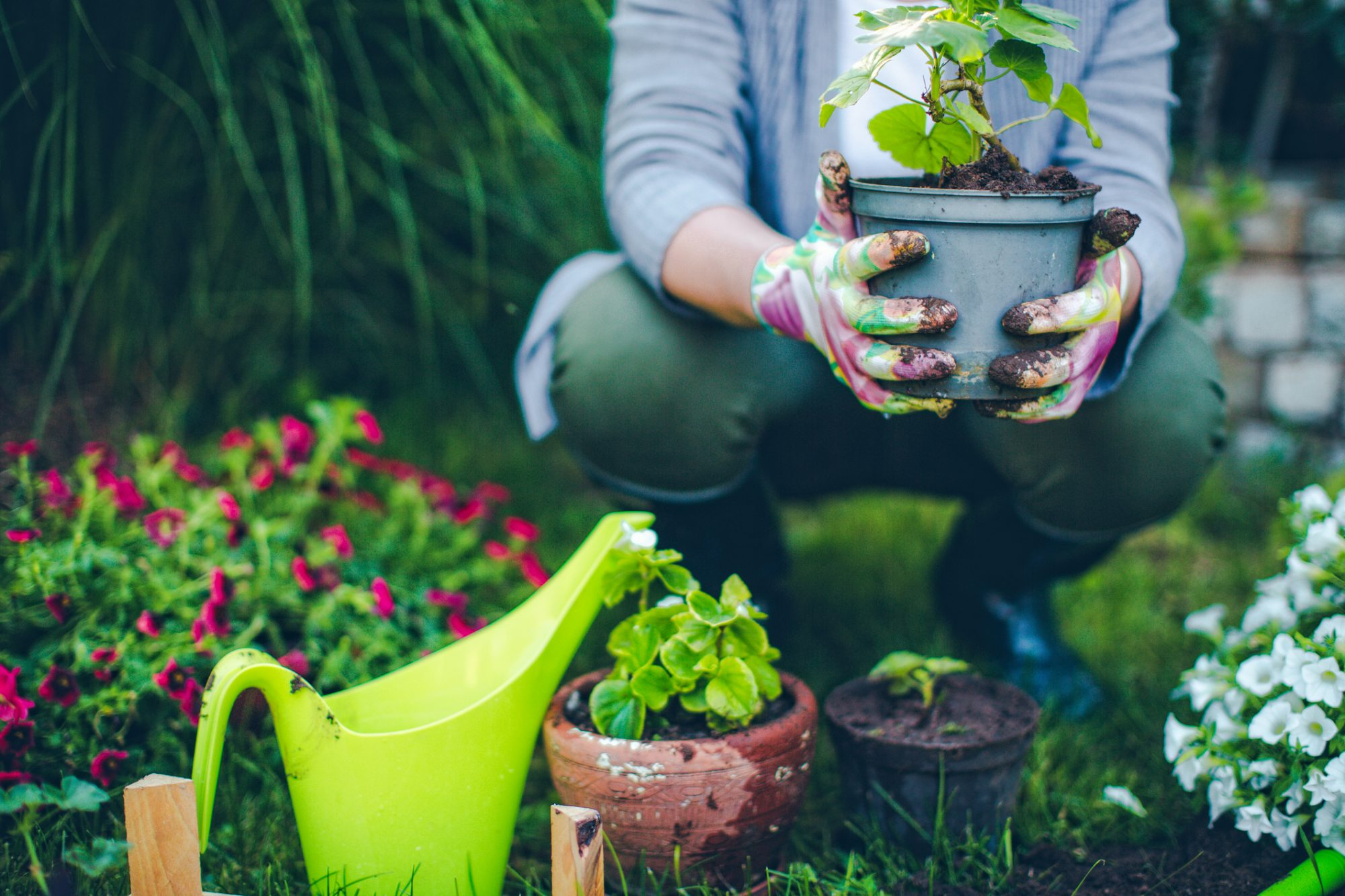 6 Gardening Trends to Look Out for in 2018