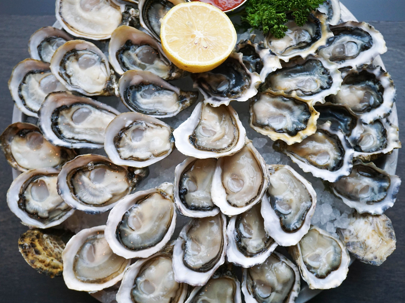 The Ultimate Road Trip for Oyster Lovers