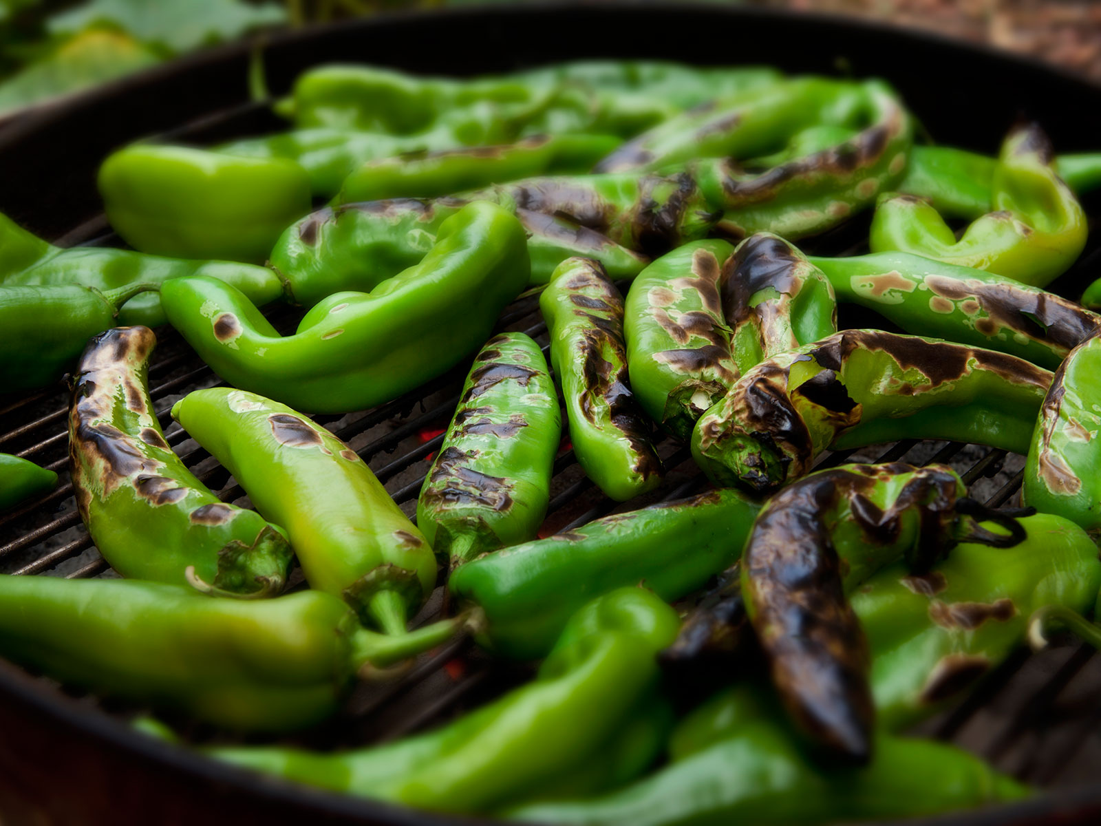 If You Can't Get to the Hatch Chile Festival This Weekend, Have Your Own Hatch Chile Festival Instead