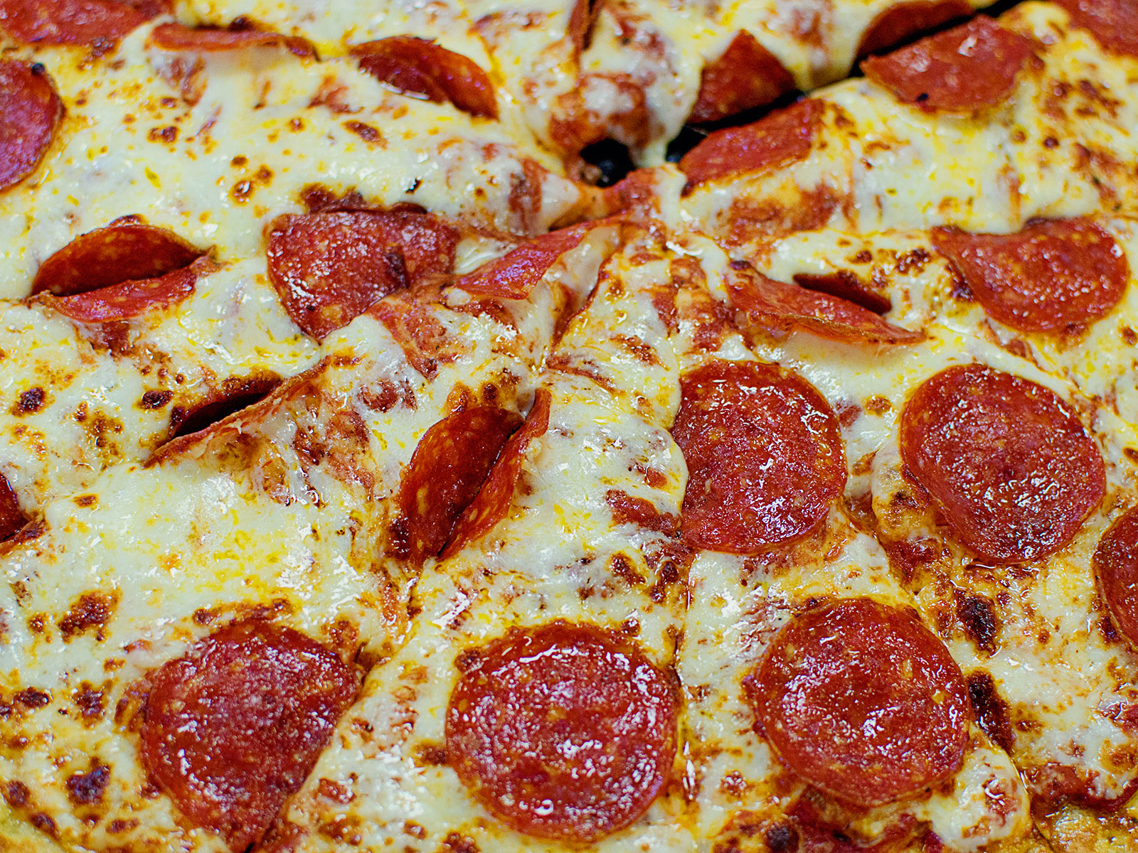 pizza lady gaga gives fans free apology pizza