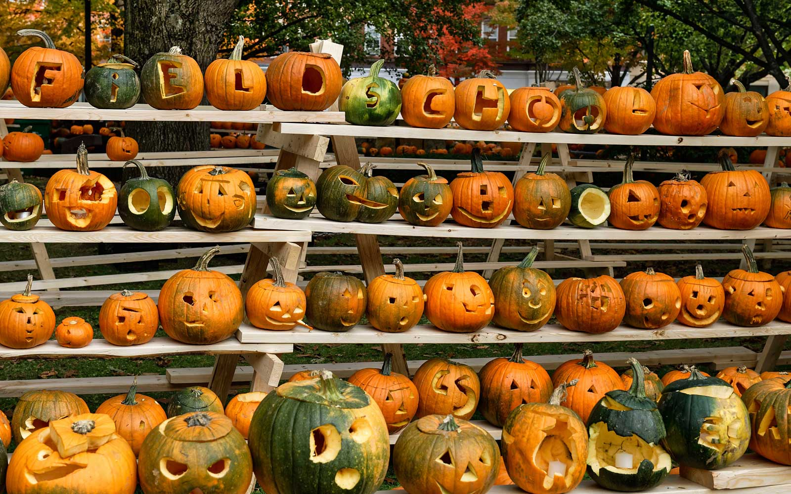 The Best Fall Festival in Every State