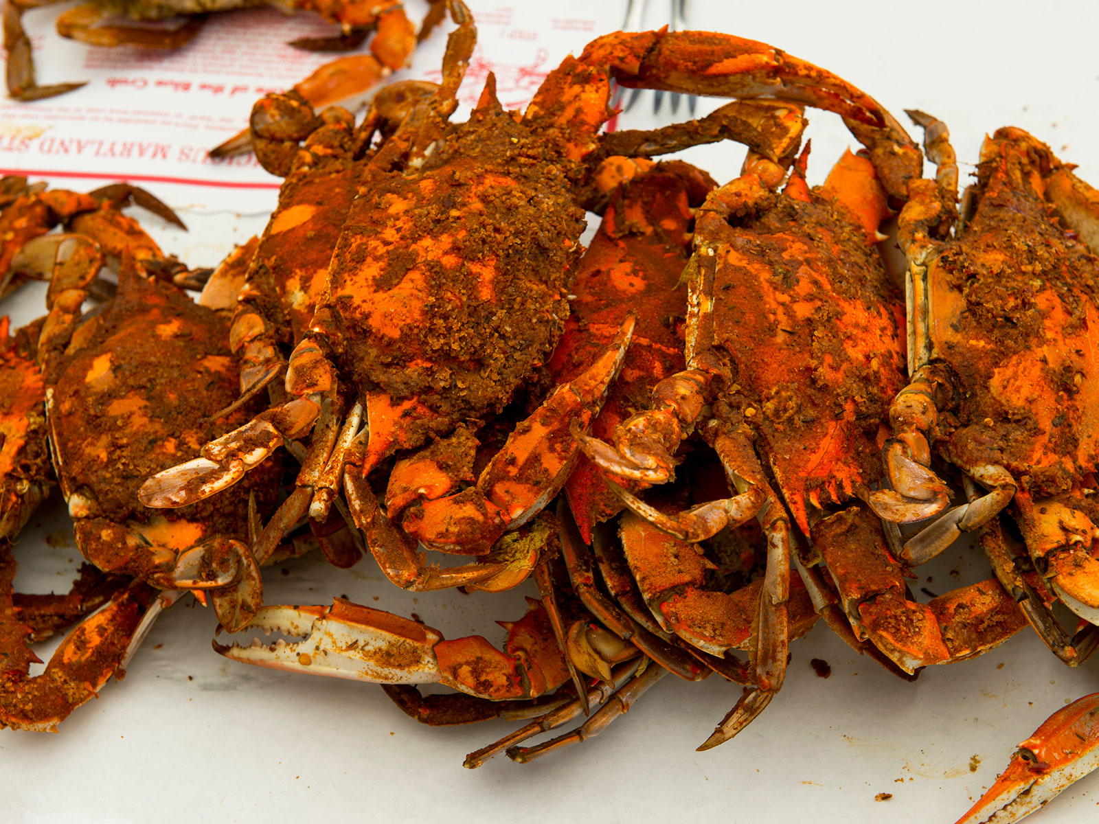 One Of Baltimore S Best Restaurants Is Throwing An Epic Crab Feast On The Inner Harbor Food Wine