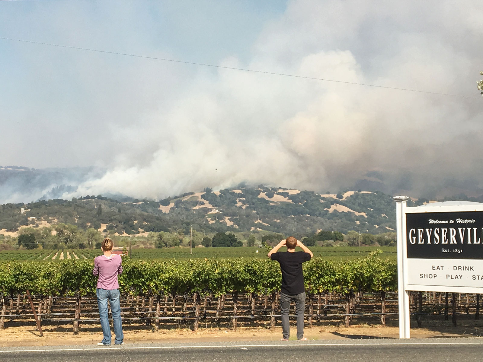 Why the Wineries Affected by the Wildfires in Napa Will be Fine