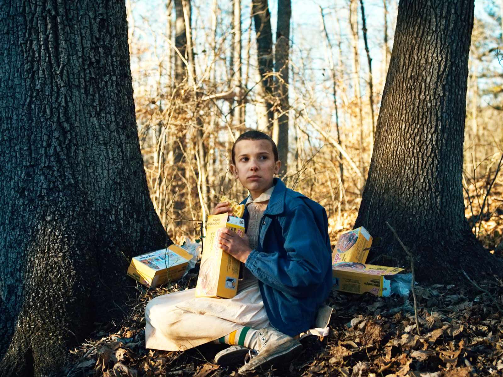eleven stranger things connection to eggos
