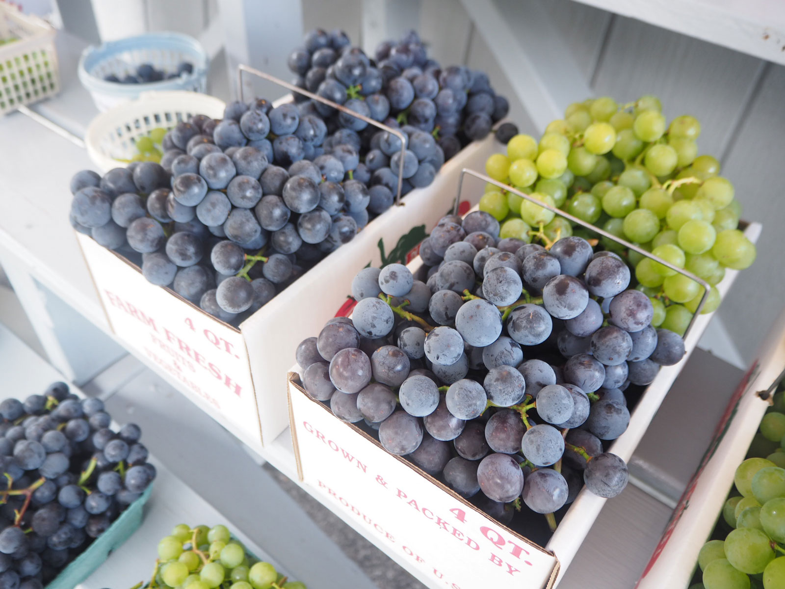 If You Aren't Eating Grapes From the Finger Lakes, You're Doing It Wrong