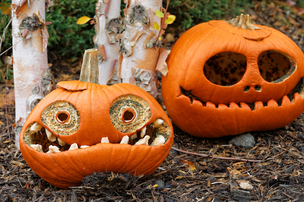 5 Easy Non-Carve Pumpkin Ideas for a Hassle-Free Halloween