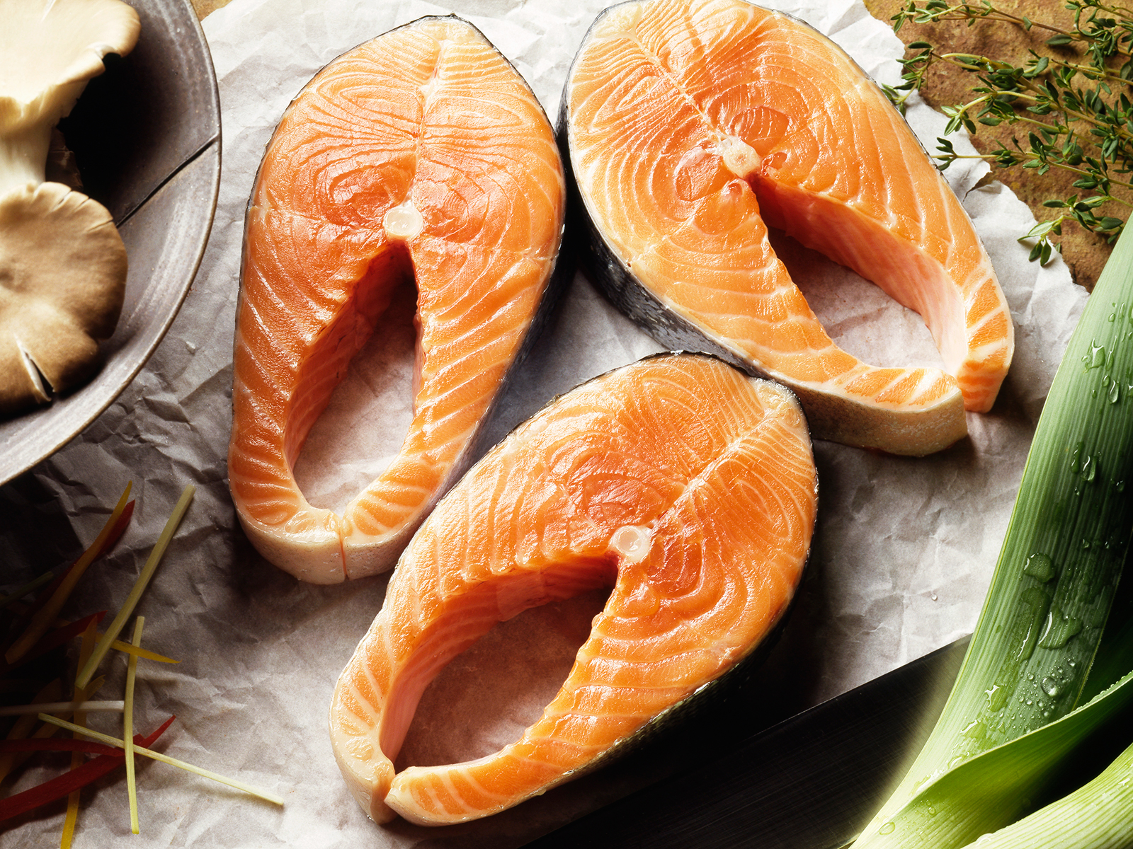 salmon genetically modified