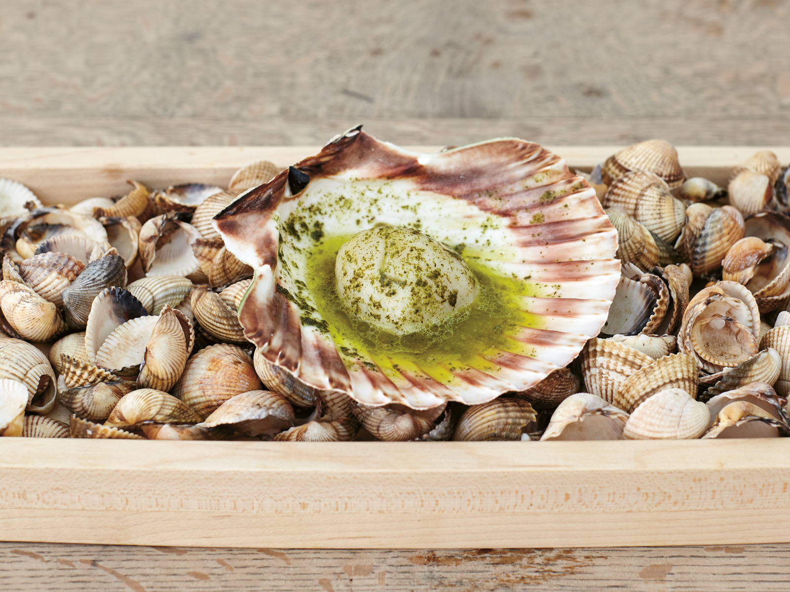 Scallop with Seaweed