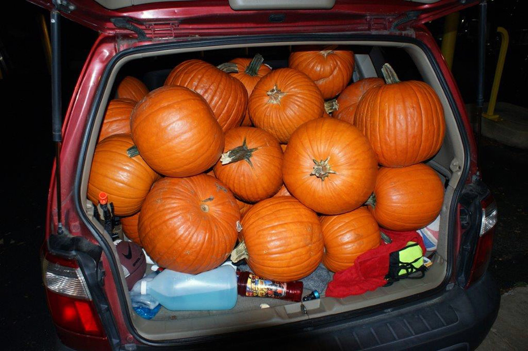 Teens Had 48 Stolen Pumpkins and 1 Gourd Crammed in 'Top-to-Bottom Orange' SUV, Police Say