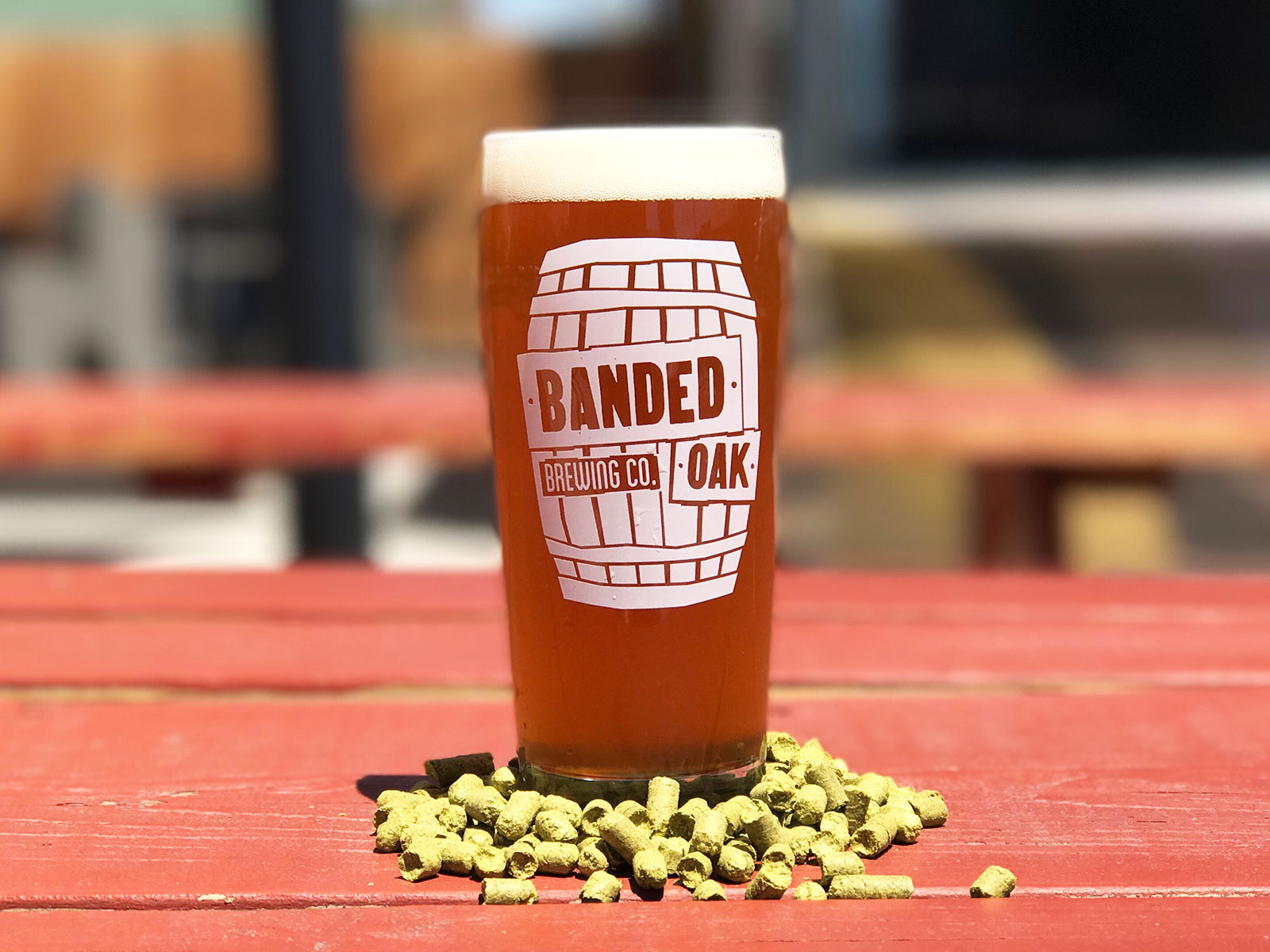Three Very Good Denver Breweries The Locals Don't Want You to Know About