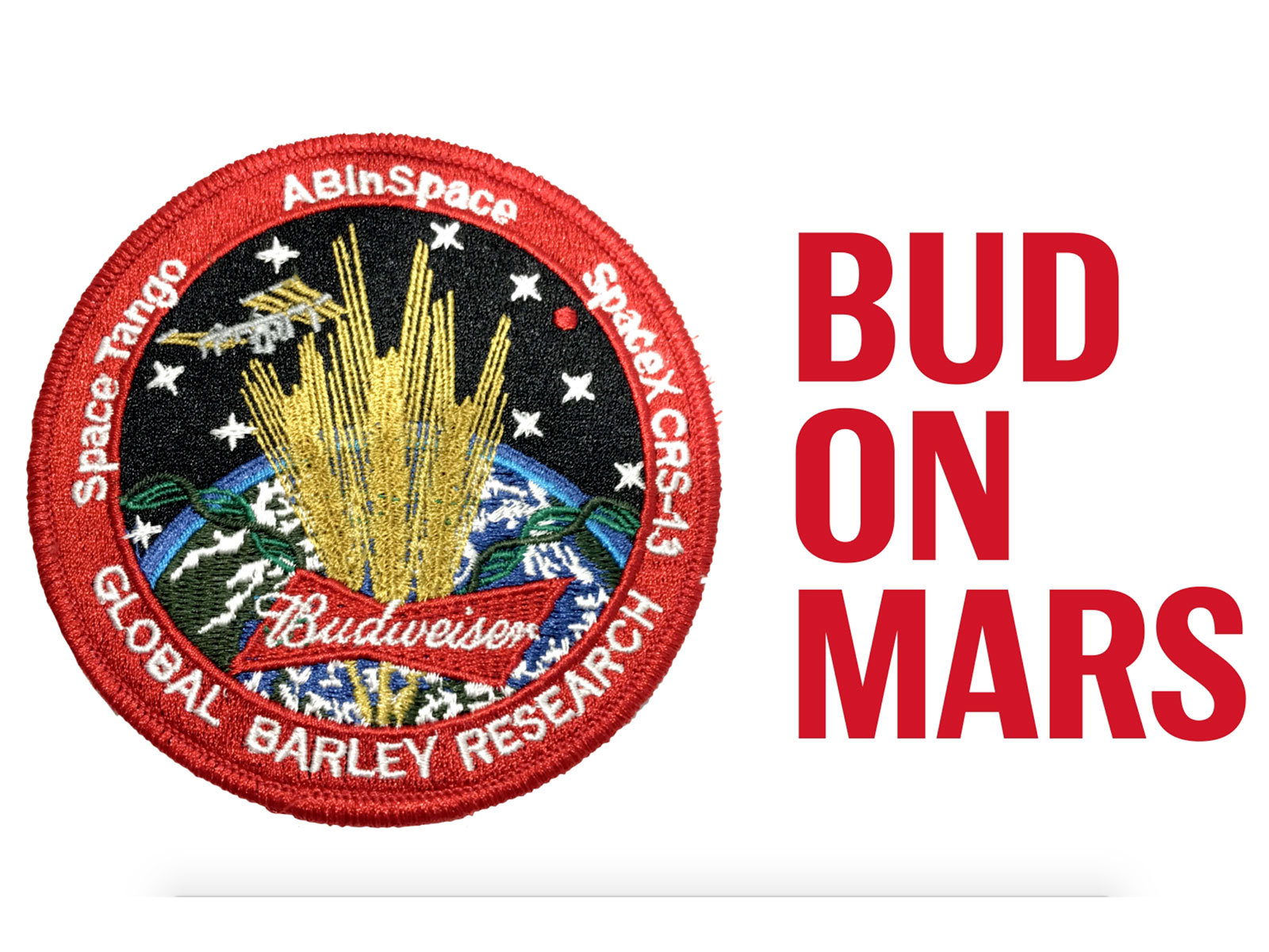 Beermaker Budweiser To Send Barley Seeds To International Space Station