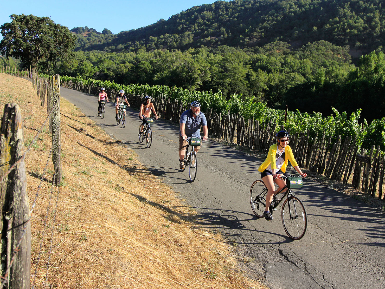 Napa and Sonoma Valley Bike Tours