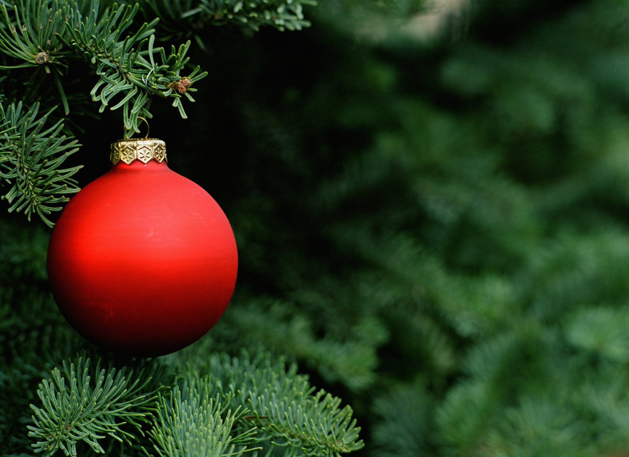 How to Avoid Stress During the Holiday Season