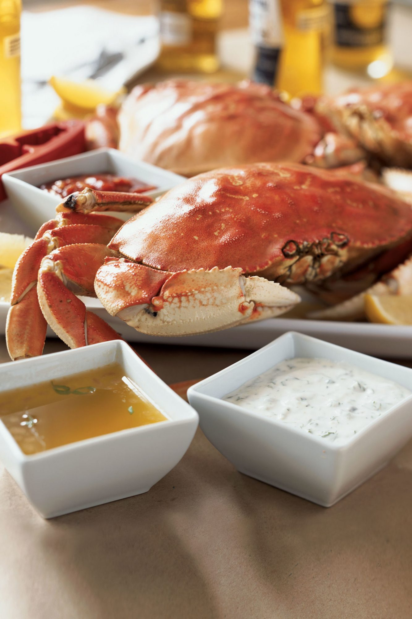 5 Things You Didn't Know About Dungeness Crab