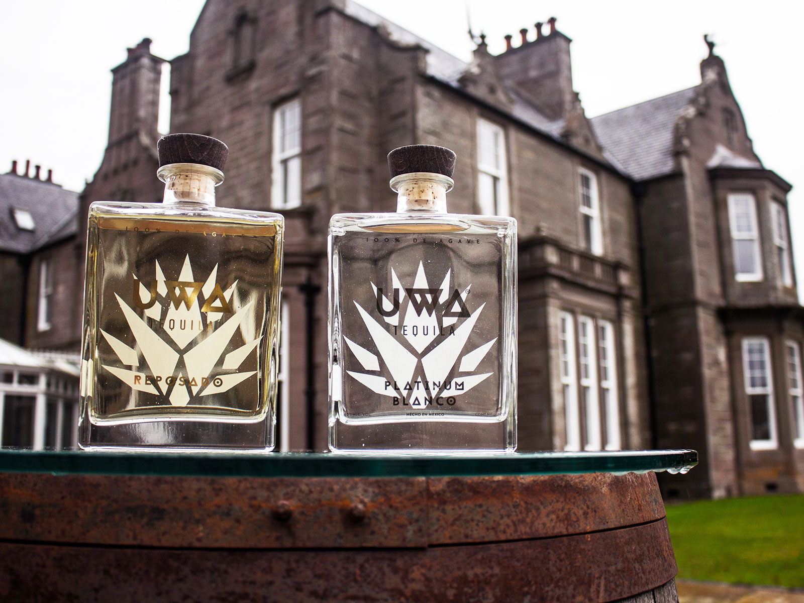 Would You Drink Tequila from Scotland?
