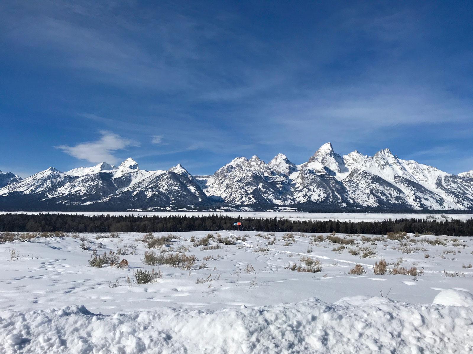 100 Hours in Jackson, Wyoming: Where to Eat, Drink and Play Like a Local