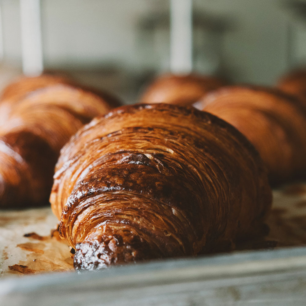 boulted bread, raleigh croissant