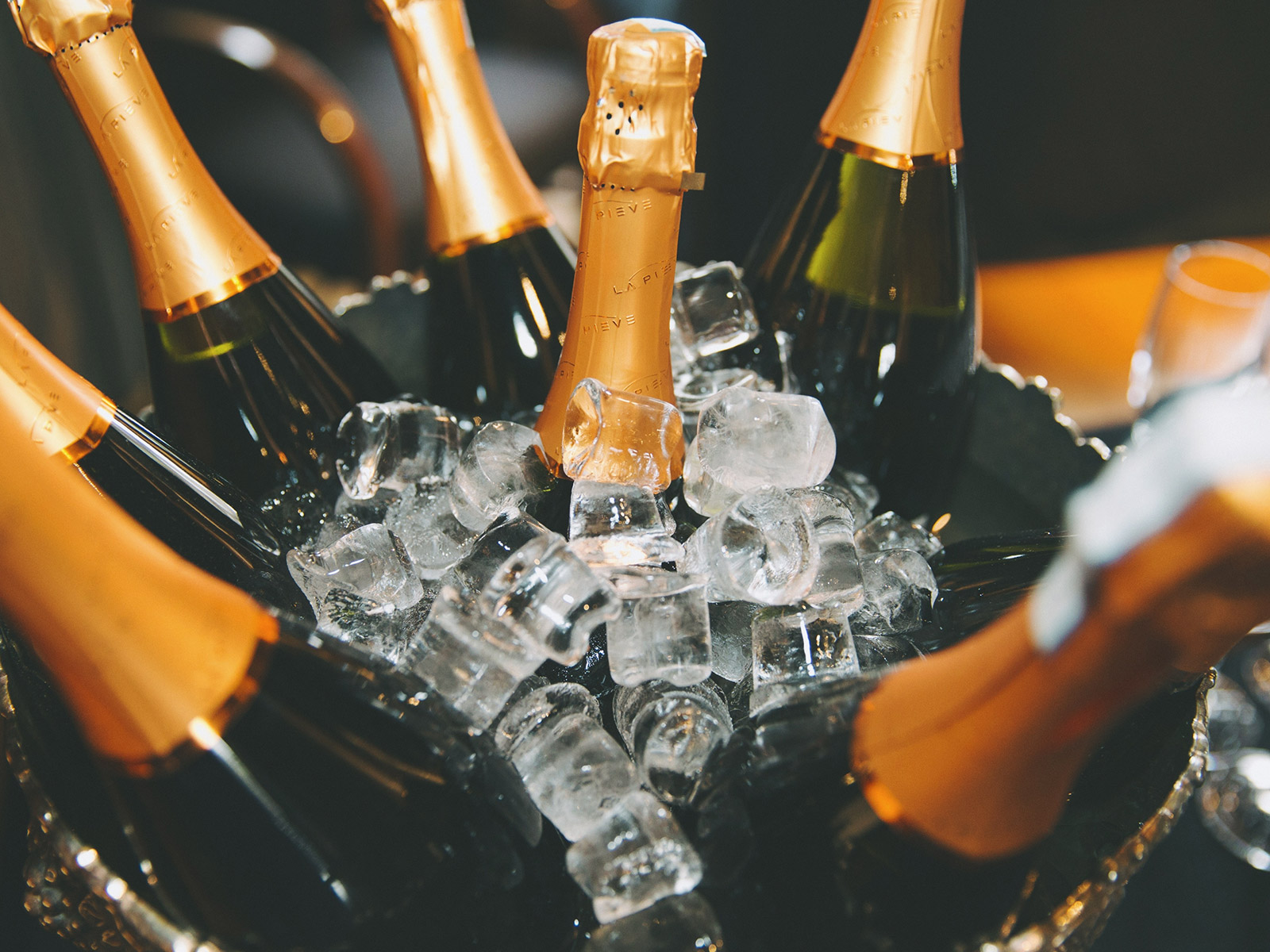 become a champagne master