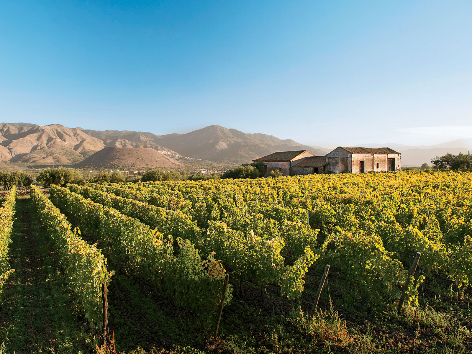 Sicilian Wine Tour Itinerary: Mount Etna