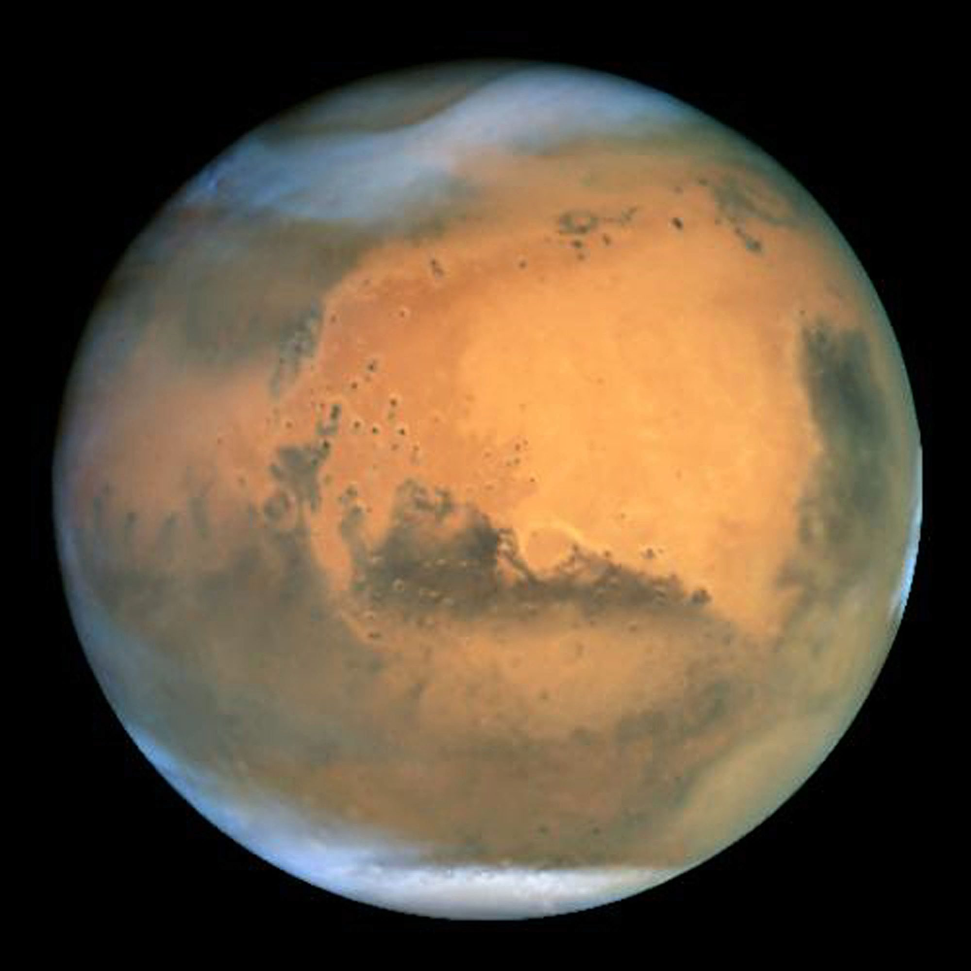 Beer on Mars: Students Find Red Planet Could Grow Hops