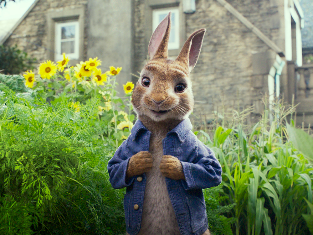 Peter Rabbit Food Waste