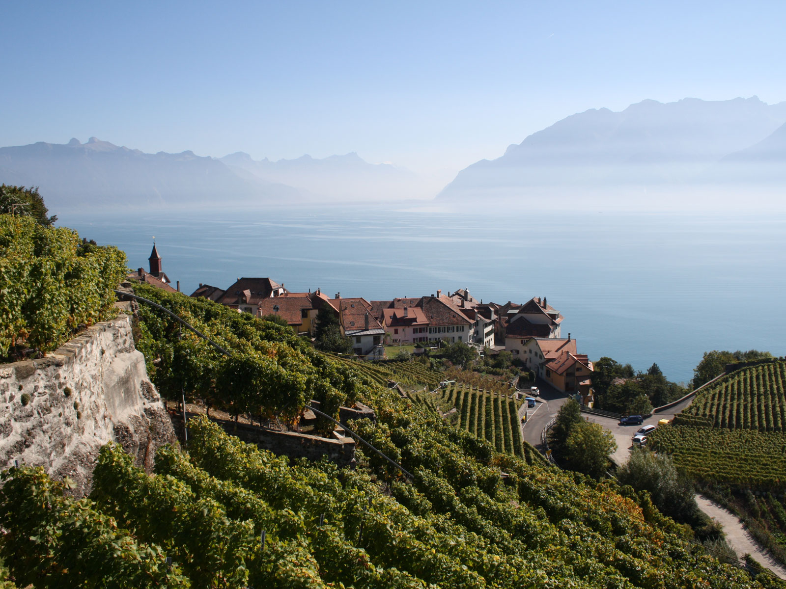The World's Most Stunning Wineries