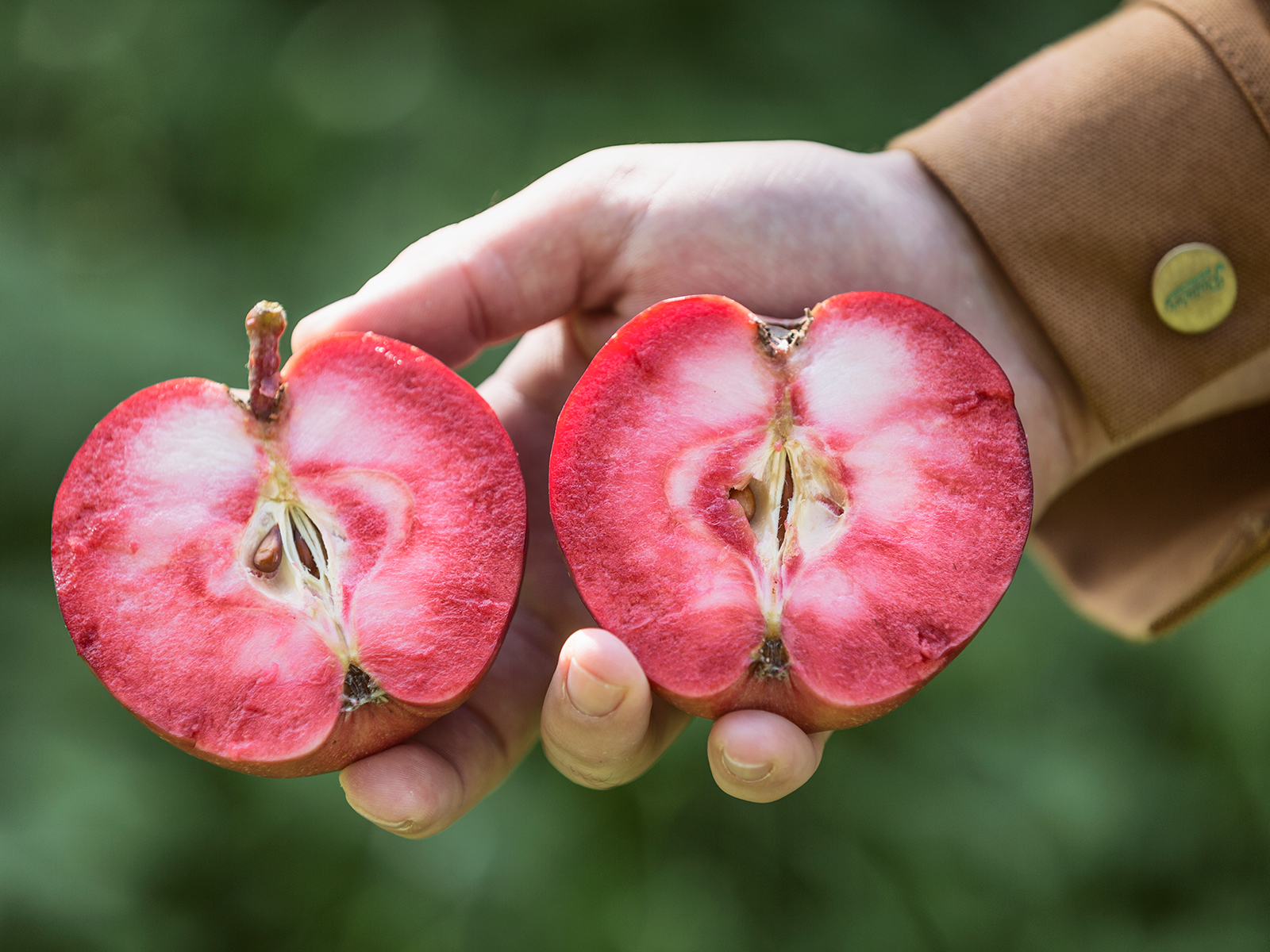 The Year of Rosé Cider Is Upon Us