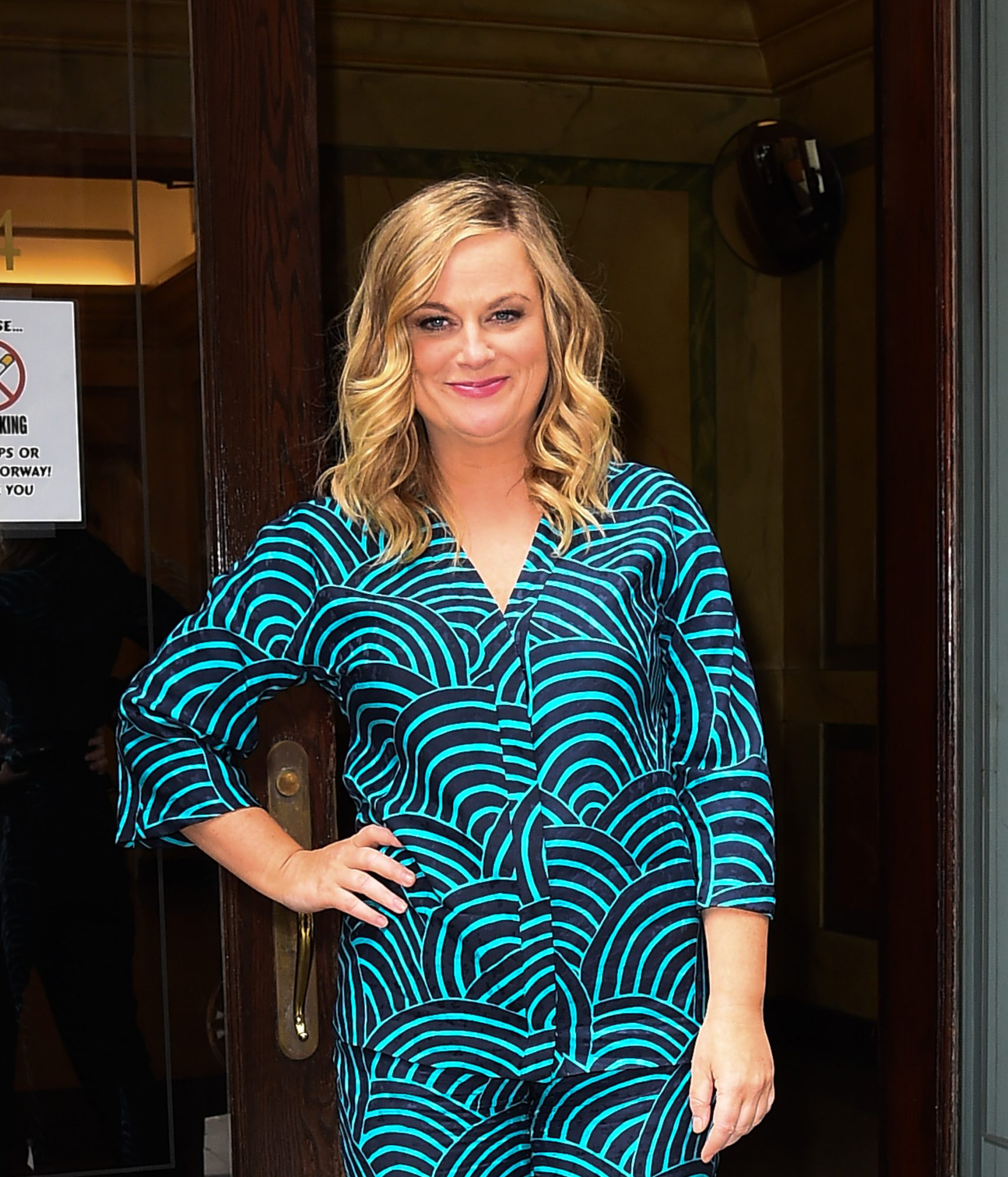 Amy Poehler to Direct and Star in 'Your New Favorite Movie,' and It Involves Wine
