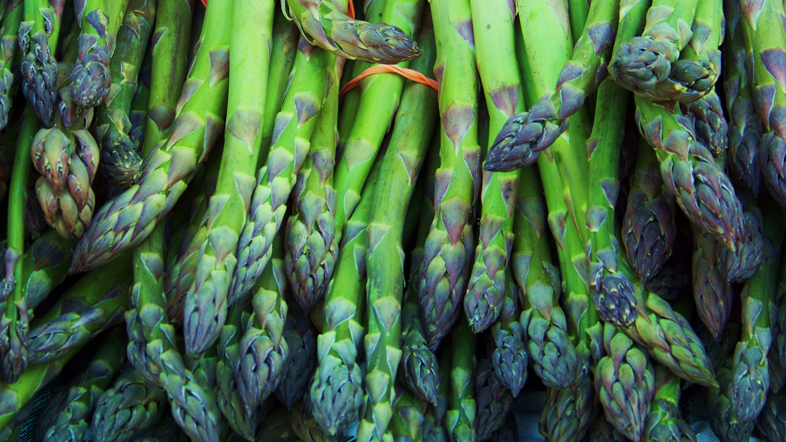 5 Extremely Spring-y Foods to Eat Right Now, According to Chef Anthony Sasso