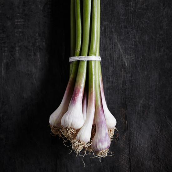 original-201405-HD-spring-green-garlic.jpg
