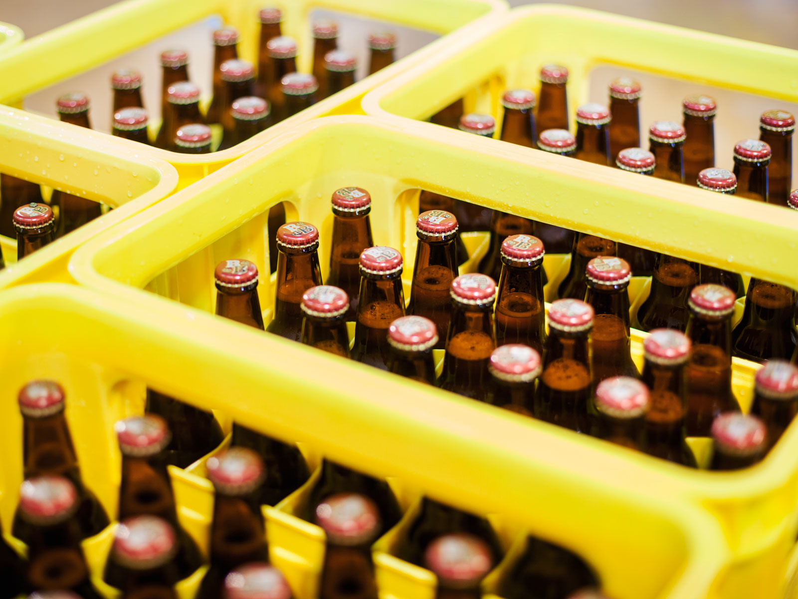 'High End' Beers in 18-Packs May Cost Less, But Could Hurt Independent Brewers