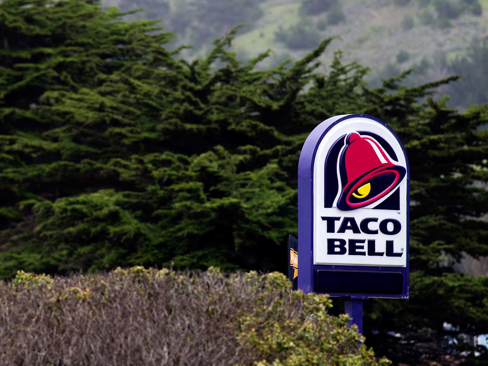 """""""Turn Left at Taco Bell""""—Google Maps Uses Fast Food Restaurants to Give Directions"""