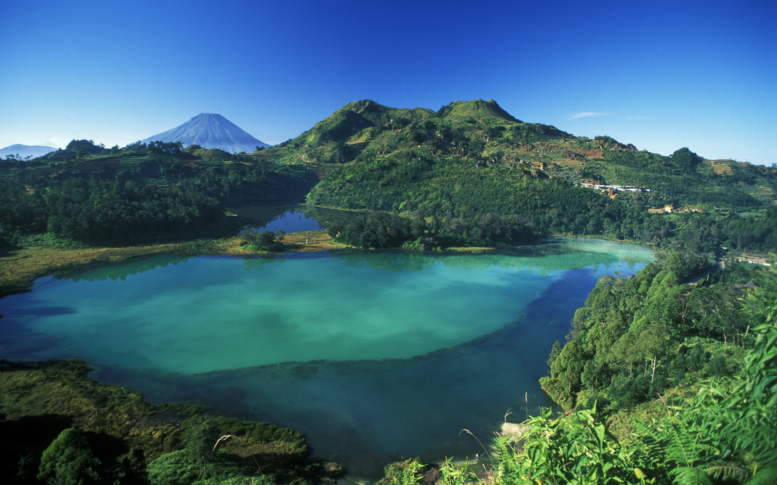 Java, Volcanic Turquoise Lake on Dieng Plateau. Telaga Warna, Indonesia