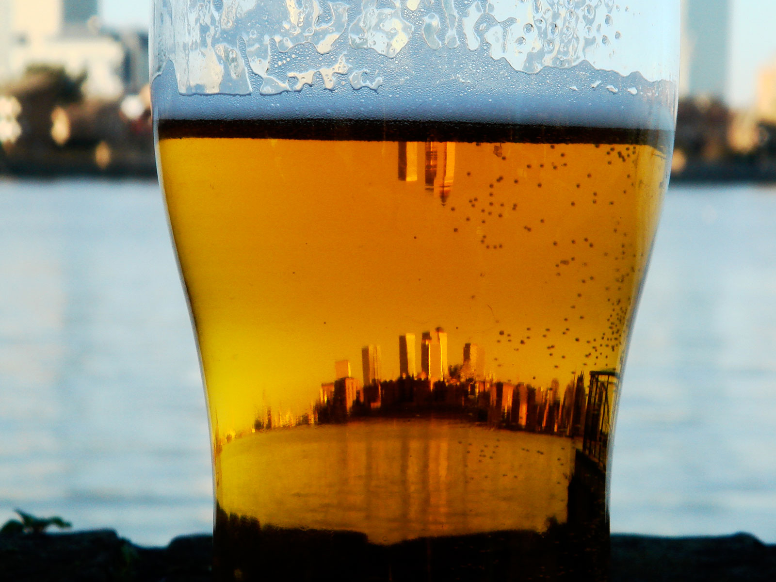 Where Is America's Craft Beer Capital?