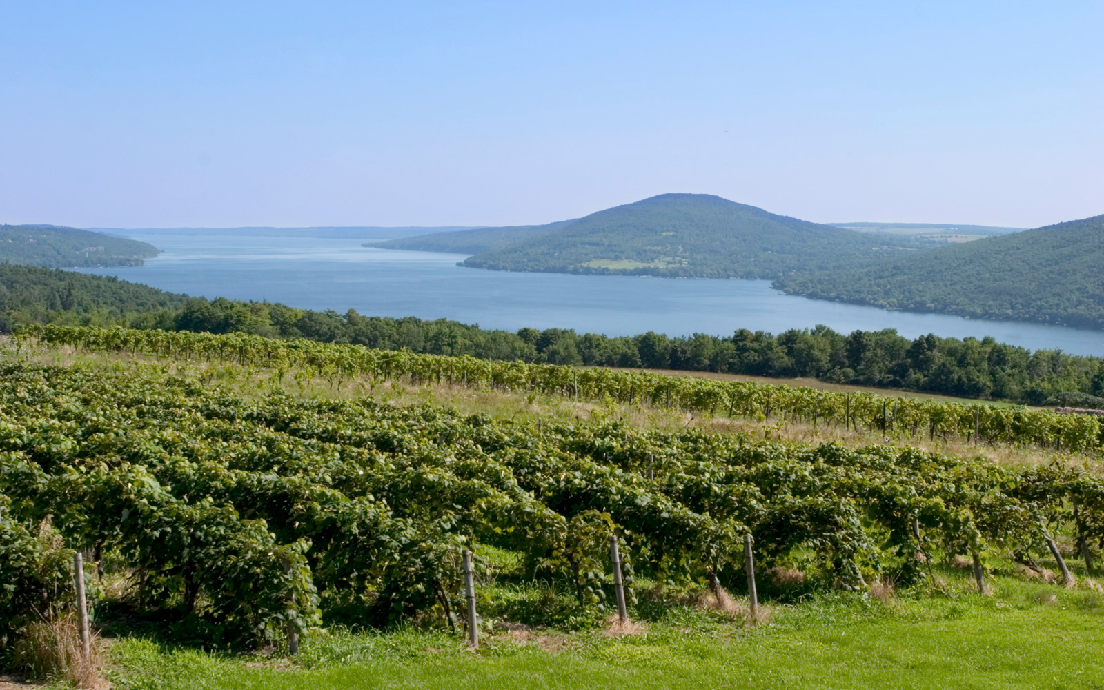 You'll Never Guess What State Has 2018's Top Wine Destination