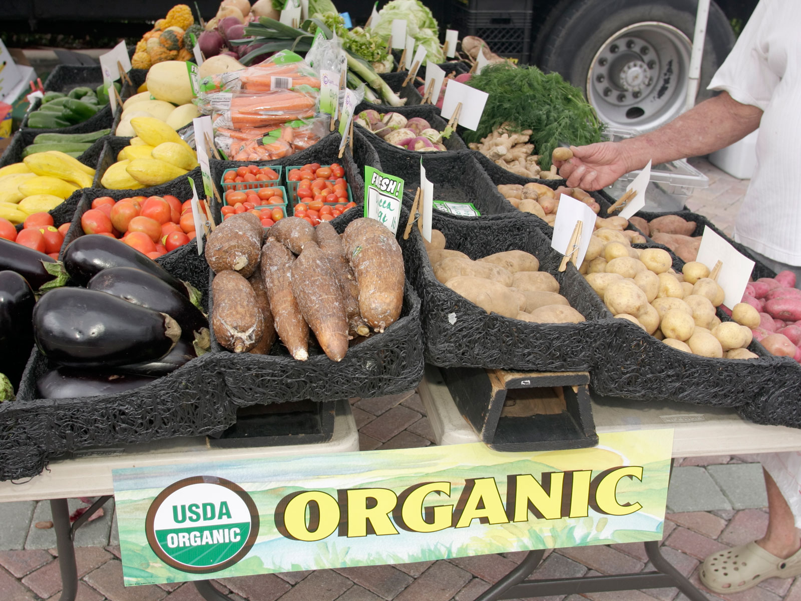 Organic Food Fraud Is a Big Problem—Here's What the Government Plans to Do About It