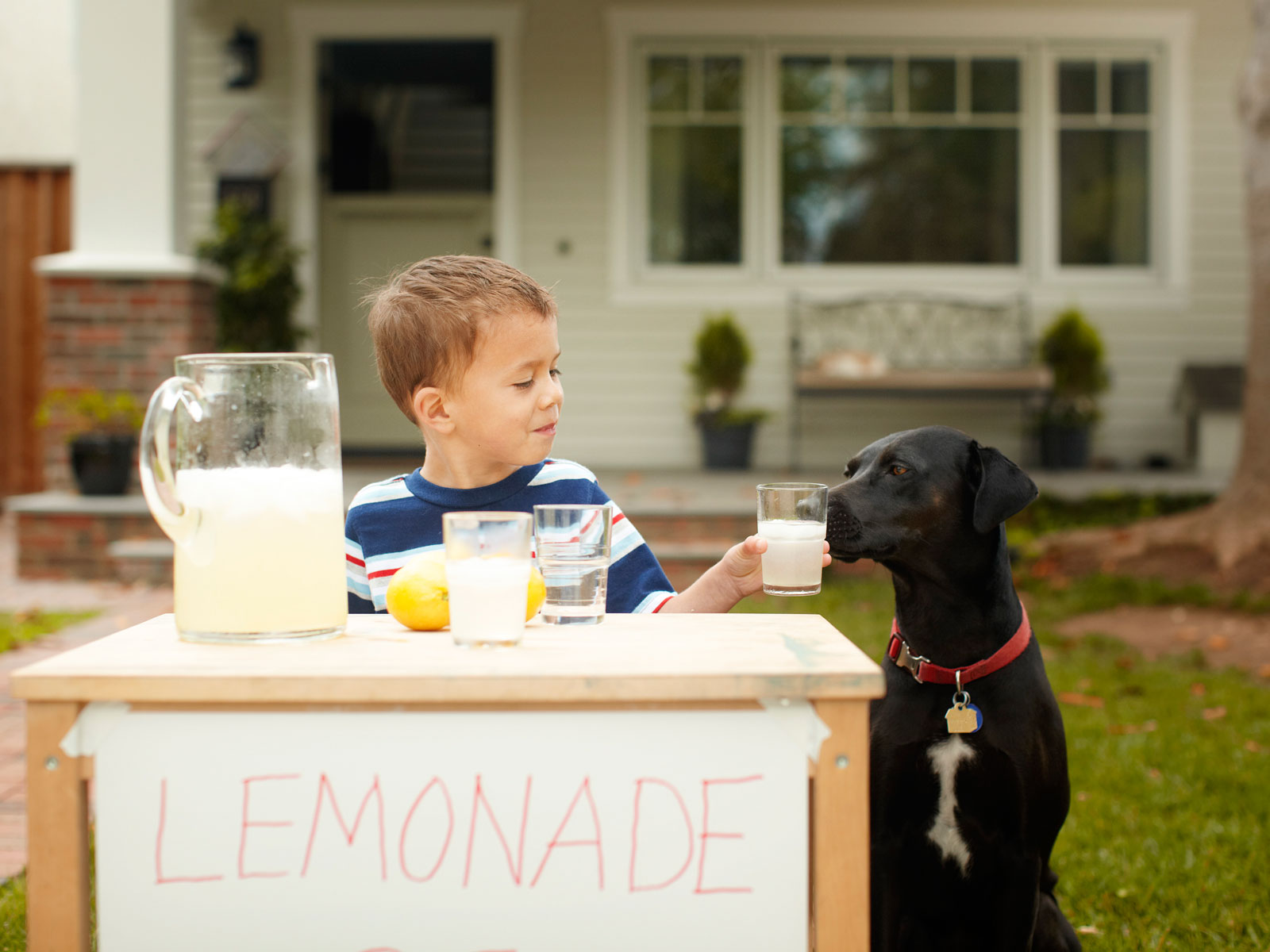 country-time-lemonade-fines-FT-BLOG0618.jpg