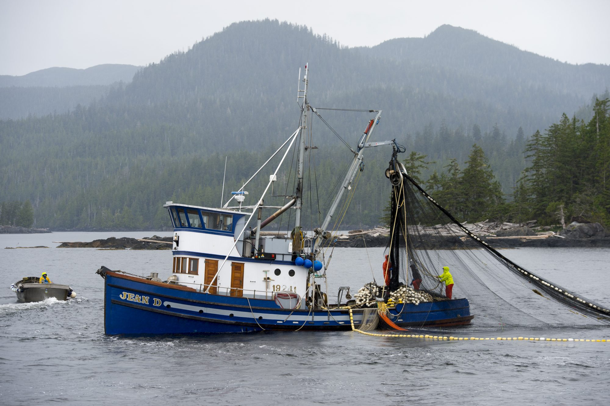 Why the Fishing Industry Might Need a Bailout