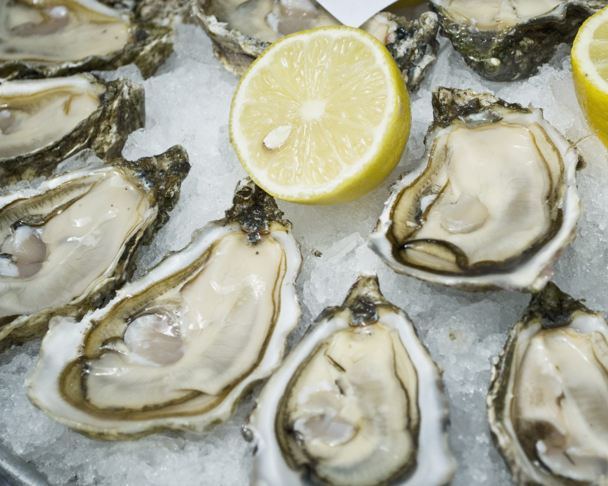 Is Shellfish Healthy?