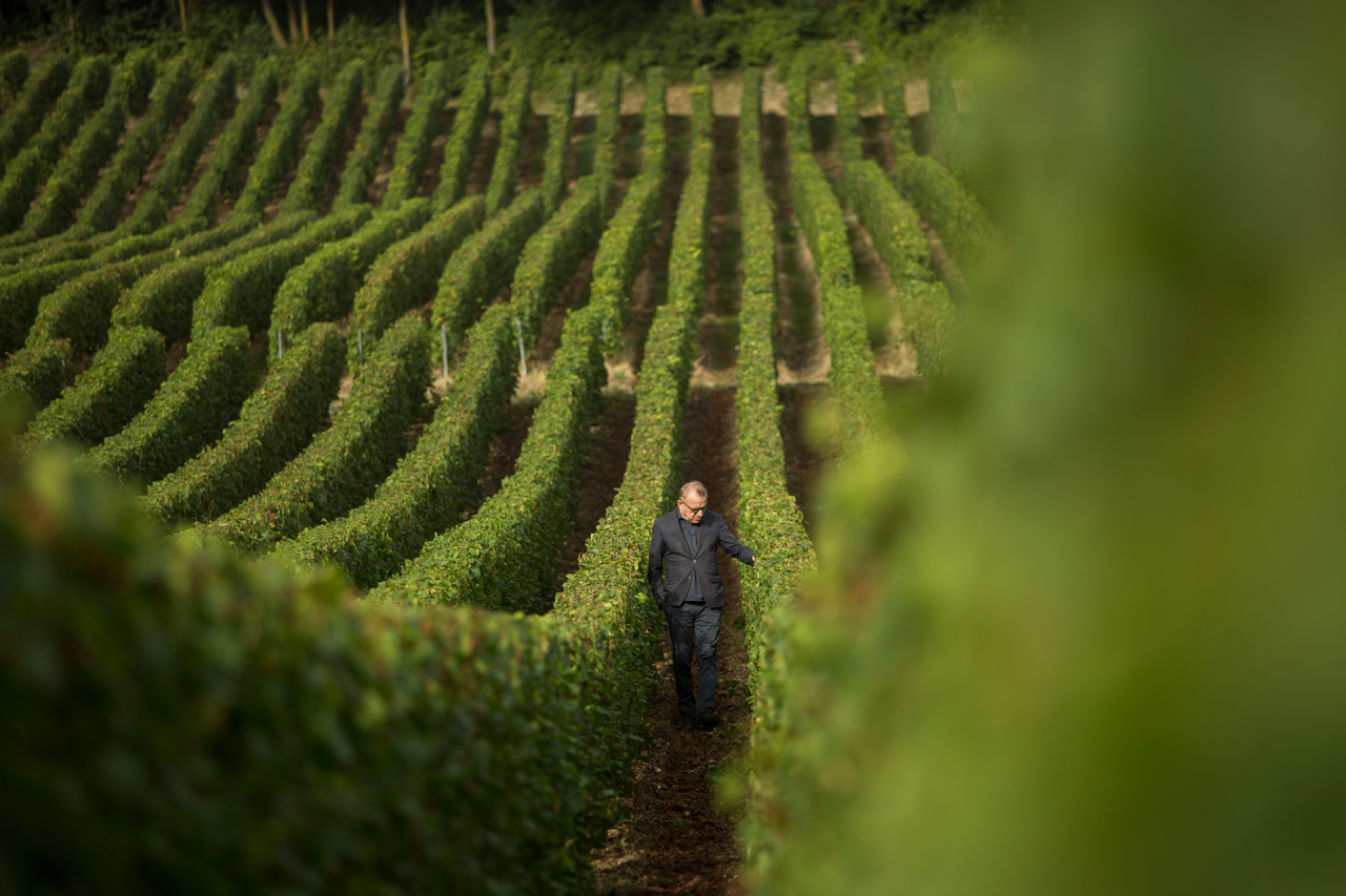 Dom Pérignon Is Undergoing a Changing of the Guard