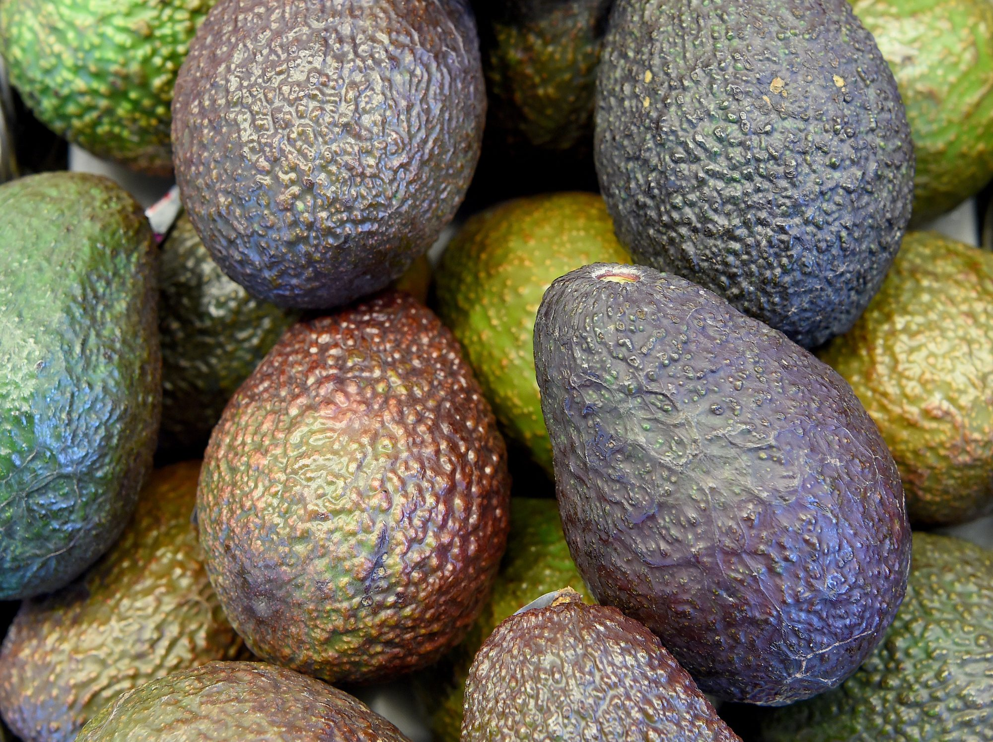 New Zealand Hit With an Avocado Crime Spree