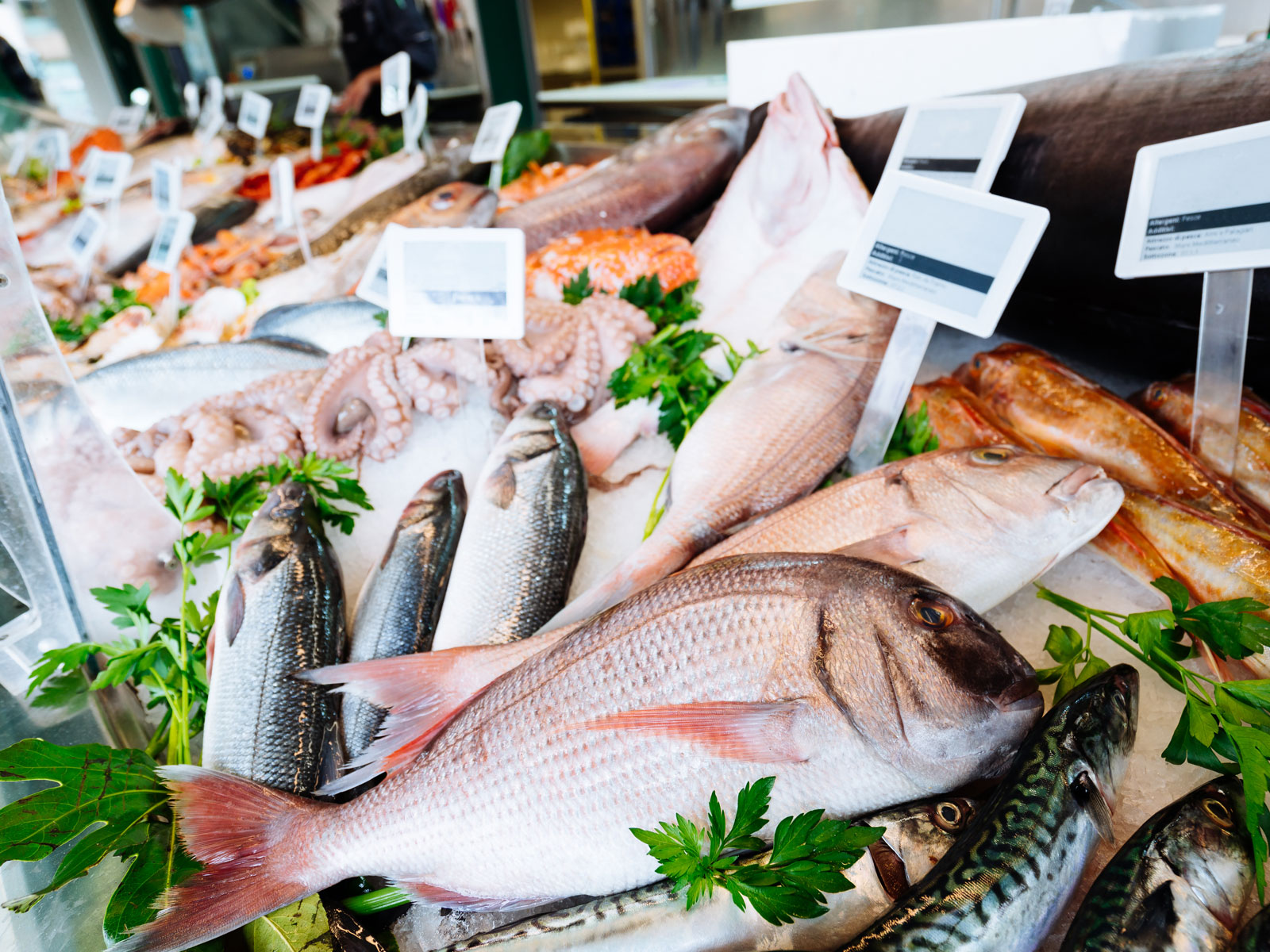 How Sustainable Is the Seafood at Your Supermarket?