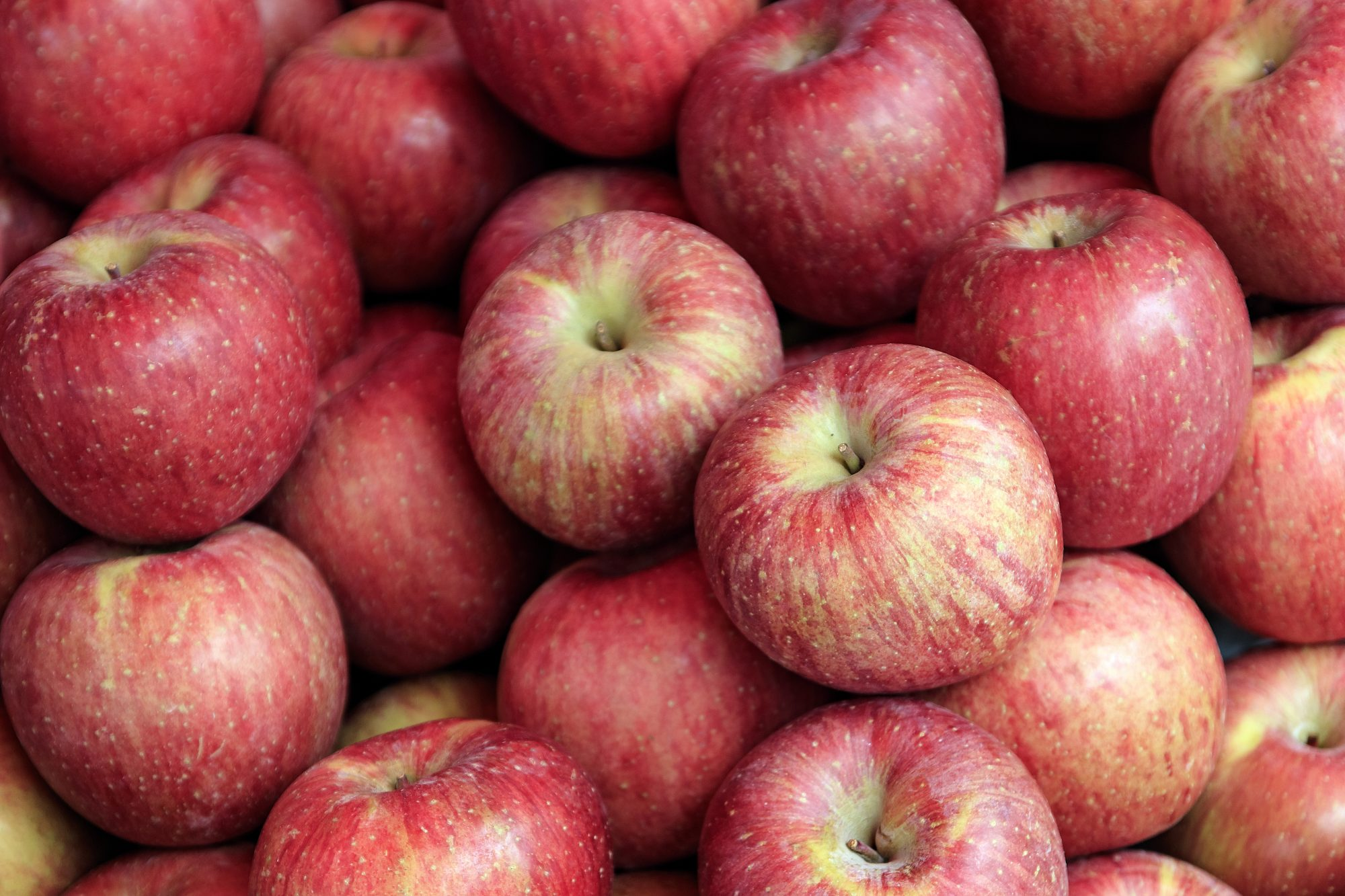 4 Ways to Keep Your Apples Fresh for Longer