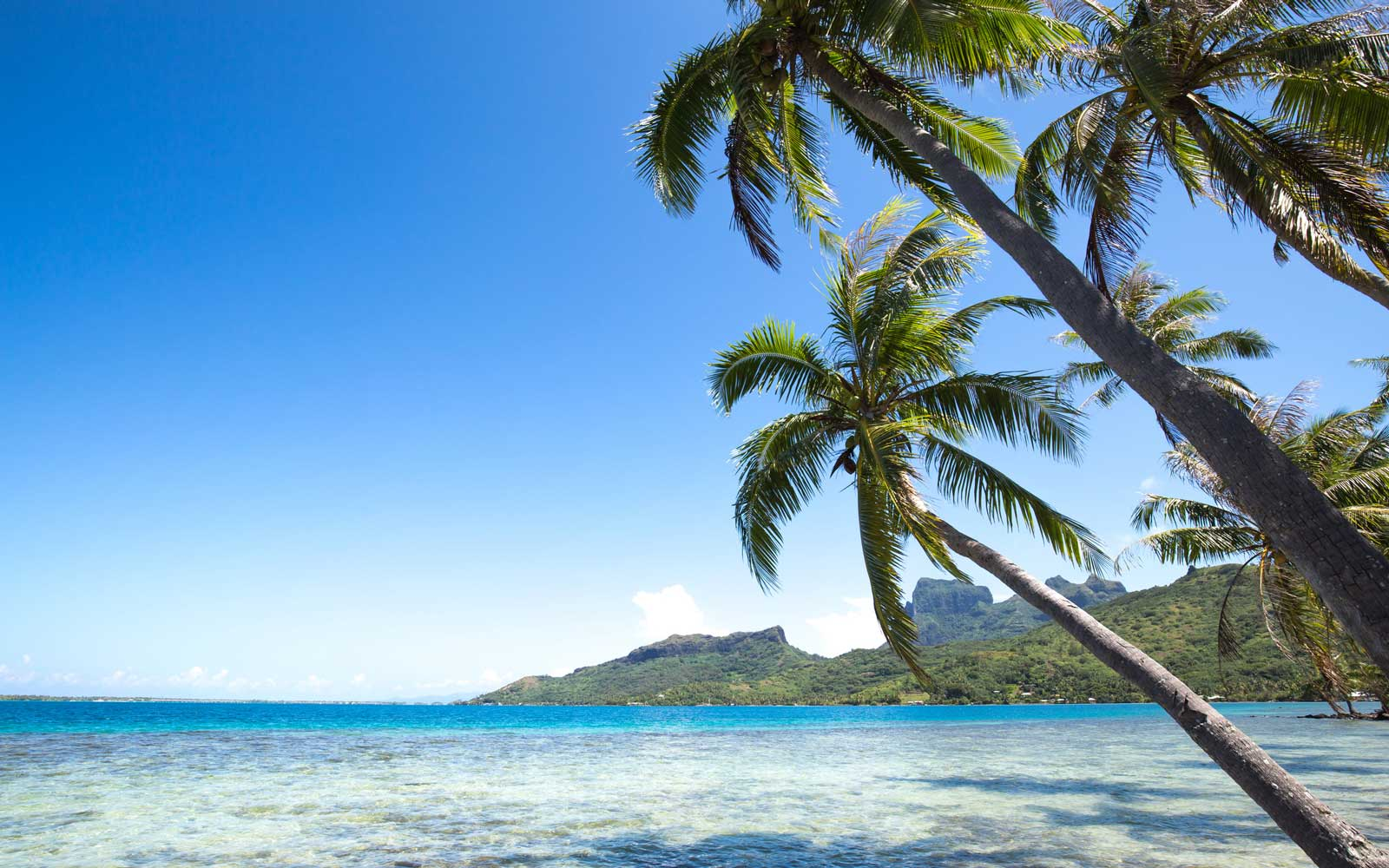 United Airlines Will Give You a Free Trip to Tahiti if You Can Prove You're a Terrible Workaholic