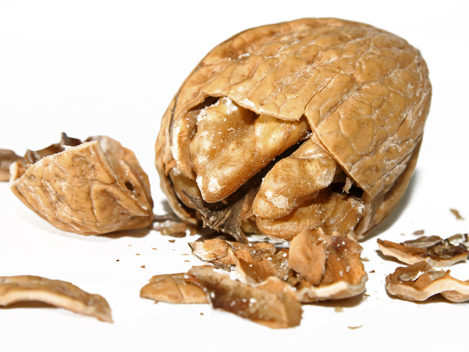 Watch a Man Break the Record for Breaking Walnuts with His Head