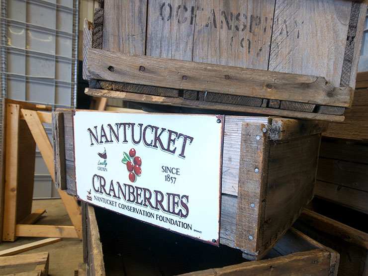 Nantucket Cranberries