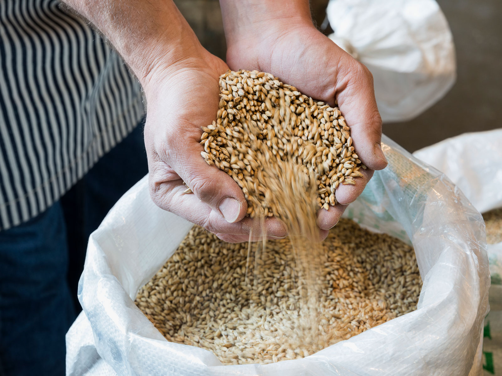 Don't Blame Canada: Beer Prices May Go Up Regardless of a Lackluster Canadian Barley Harvest