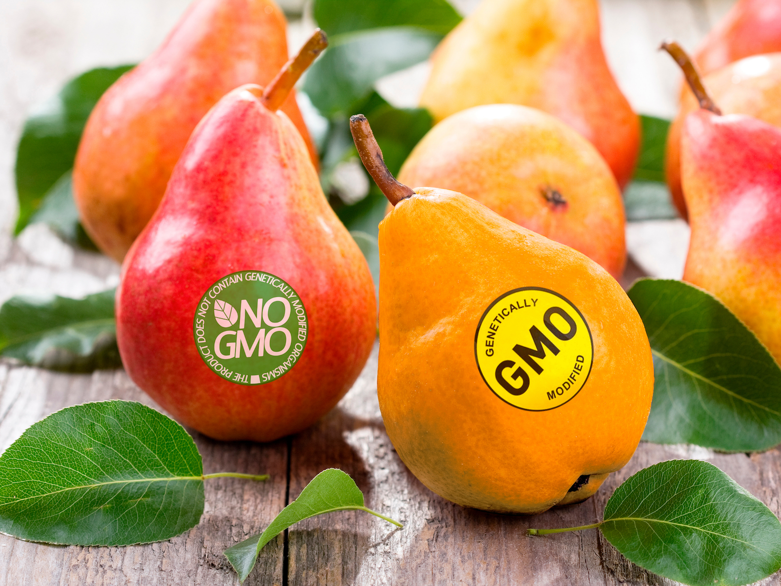 GMO Labeling Will Have to Appear on Products by 2022, USDA Says