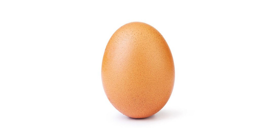 This Egg Has More Instagram Clout Than You